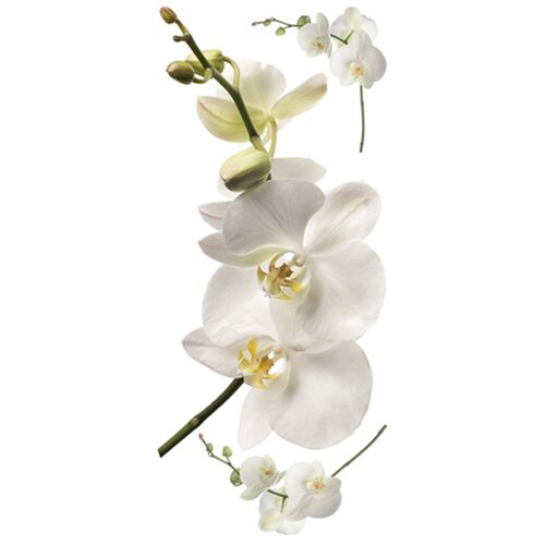 Room Mates Room Mates 3 Piece Deco White Orchid Wall Decal Set
