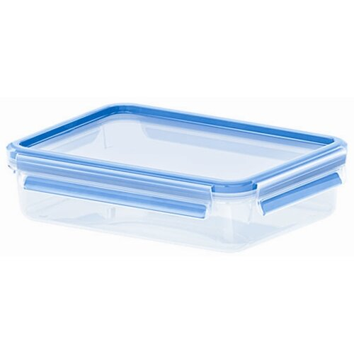 Emsa by Frieling 40.5 Oz. 3D Food Storage Shallow Rectangular Clip and Close Container