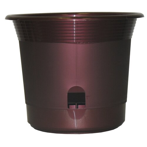 Apollo Plastics Self-Watering Planter