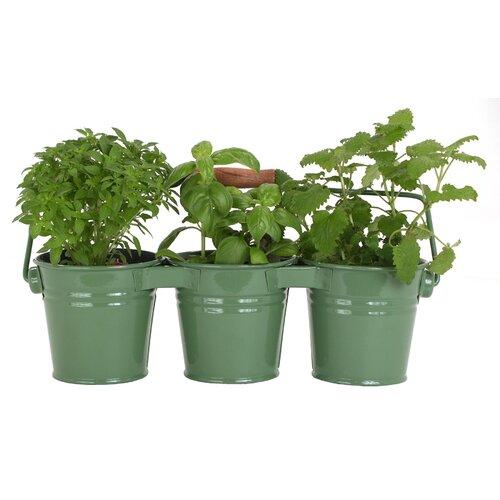 3 Pail Planter (Set of 18)