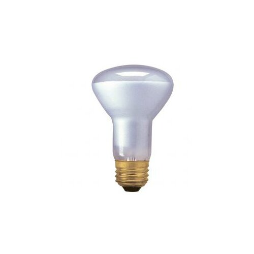 Bulbrite Industries 45W120-Volt (2800K) Halogen Light Bulb