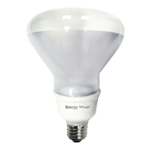 Bulbrite Industries 16W 120-Volt Fluorescent Light Bulb