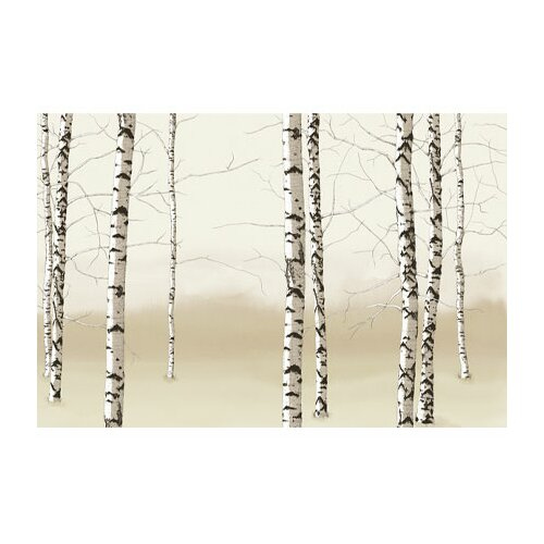 4 walls modern murals birch trees wall mural reviews for Birch wall mural