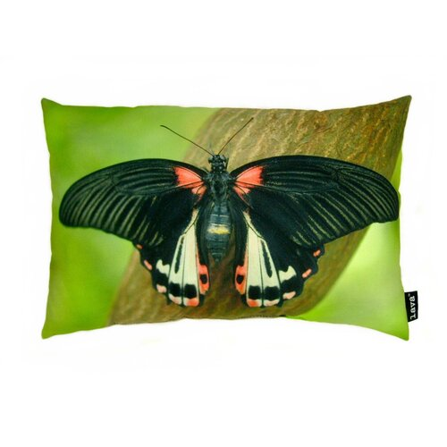 Butterfly on Branch Polyester Pillow