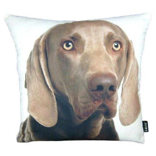 lava Weimareiner Pillow