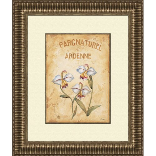 Pro Tour Memorabilia Parcnaturel B Framed Graphic Art