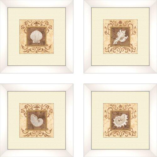 Pro Tour Memorabilia Coastal Stylized Shell 4 Piece Framed Graphic Art Set
