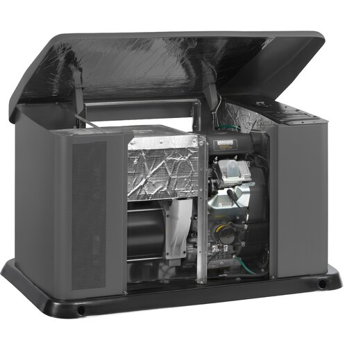 Briggs & Stratton 16 Kw Air-Cooled 100 Amp Single Phase 120/240 V Natural Gas Propane Standby Generator with 16 Circuit Automatic Transfer Switch in Steel Enclosure