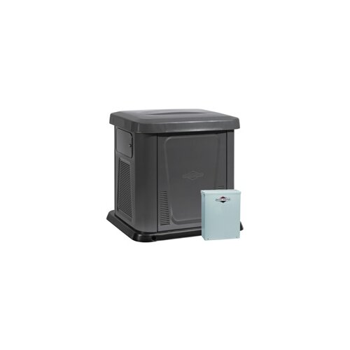 Briggs & Stratton 12 Kw Air-Cooled 150 Amp Single Phase 120/240 V Natural Gas Propane Standby Generator in Steel Enclosure