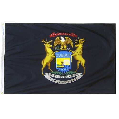 Annin Flagmakers Michigan State Flag