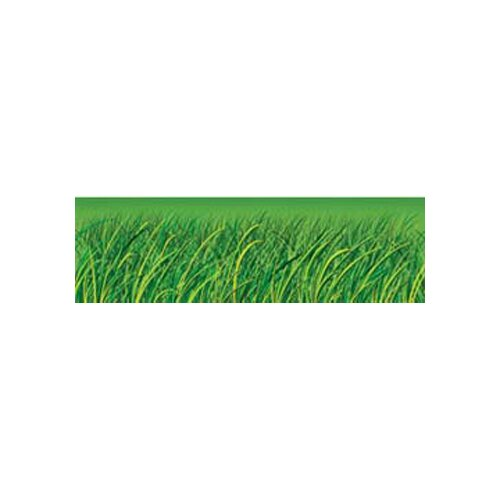 Frank Schaffer Publications/Carson Dellosa Publications Grass Big Borders 8 Pcs Gr Pk-5