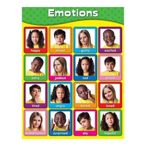 Frank Schaffer Publications/Carson Dellosa Publications Chartlets Emotions