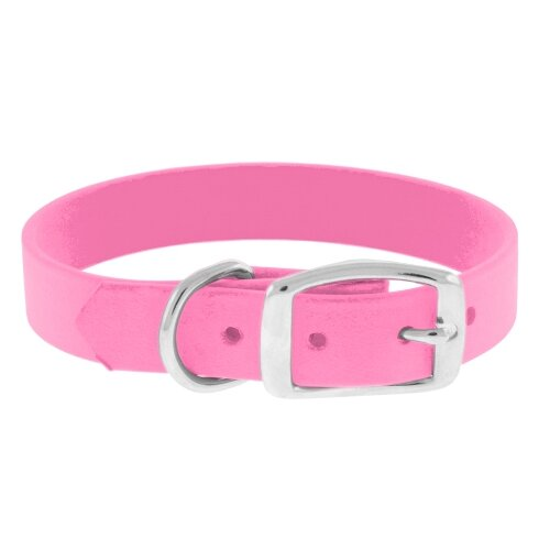 The Perfect Leash The Perfect Dog Collar