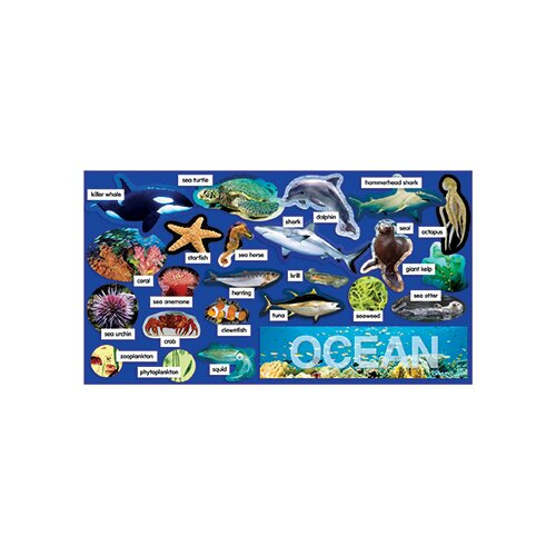 Teachers Friend Ocean Plants & Animals Mini Bb Set