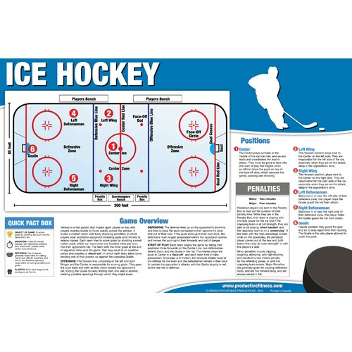 Productive Fitness Publishing Ice Hockey Poster