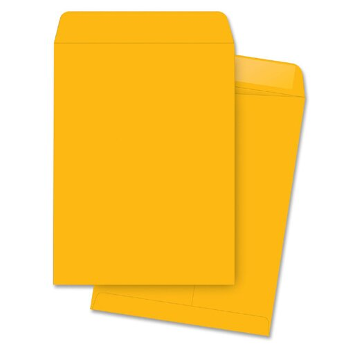 "Business Source Catalog Envelopes, Plain, 10""x13"", 250 per Box, Kraft"
