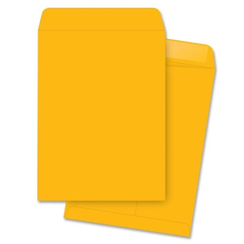 "Business Source Catalog Envelopes, Plain, 9-1/2""x12-1/2"", 250 per Box, Kraft"