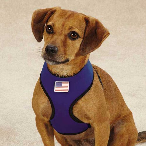 Casual Canine Neoprene Harness