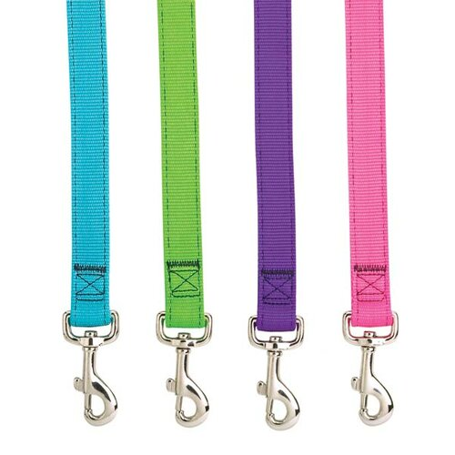 Double Layer Brites Dog Leash