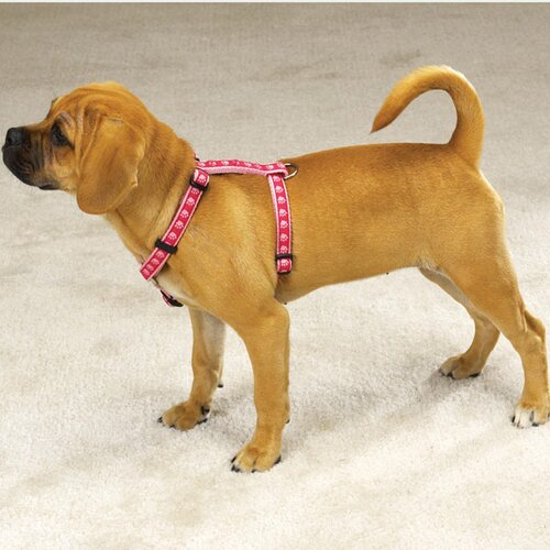 Two Tone Pawprint Dog Harness