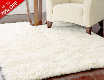 Plush & Shag Area Rugs