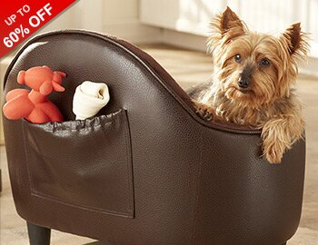 Two Paws Up: Pet Beds & More