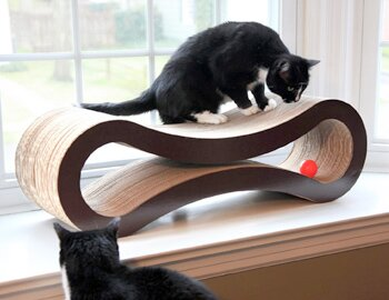 Cat Scratch Fever: Trees & Perches