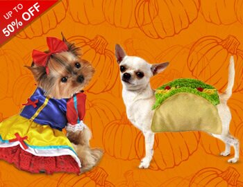 Halloween HQ: Pet Costumes