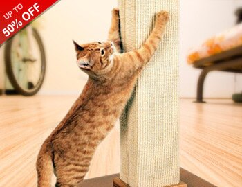 Cat Scratch Fever: Post & Perches
