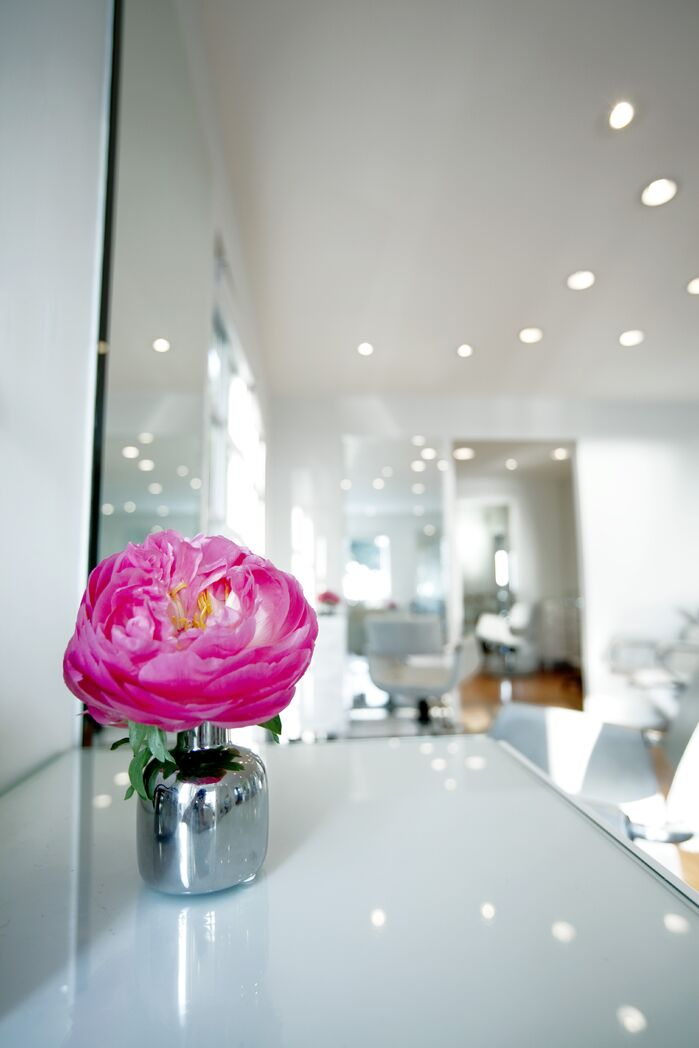 Contemporary Commercial photo by LUXE interiors by anne