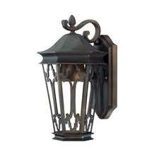 <strong>Capital Lighting</strong> Dark Sky 1 Light Outdoor Wall Lantern