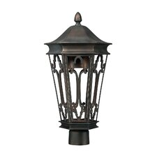 Dark Sky 1 Light Outdoor Post Lantern