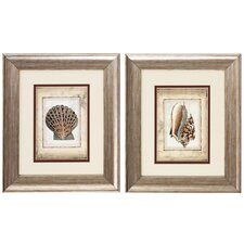 Shell I and II 2 Piece Framed Painting Print Set (Set of 2)