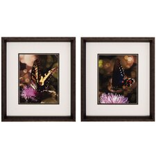 Butterfly I / II Wall Art (Set of 2)