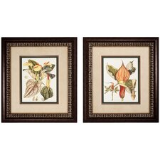 <strong>Propac Images</strong> Botanical I and III Framed Print Set (Set of 2)