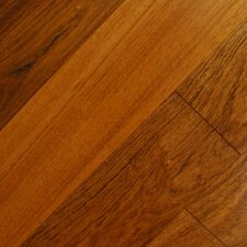 "Exotic Smooth 3-1/2"" Engineered Jatoba"