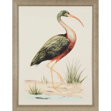 Water Bird I by Meyer Framed Painting Print