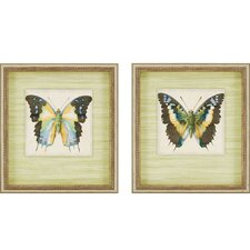 Butterfly I by Goldberger 2 Piece Framed Graphic Art Shadow Box Set
