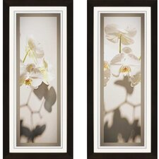 White Orchid Giclee by Sikes 2 Piece Framed Photographic Print Set