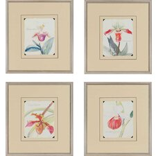 Orchids by Della-Piana 4 Piece Framed Painting Print Set