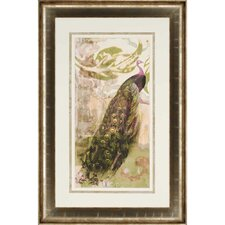 Rustic Peacock I by Goldberger Framed Painting Print
