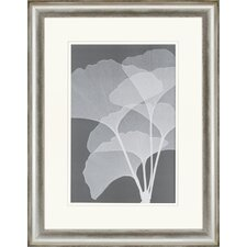Gingkos I by Meyers Framed Painting Print