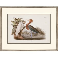 "Audubon Egrets by Audubon Traditional Art - 24"" x 31"" (Set of 2)"