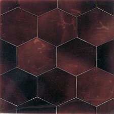 "Ocean Jewels 2"" x 2"" Hexagon Accent Tile in Young Pin"