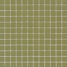 "Maracas Glass 1"" x 1"" Frosted Mosaic Tile in Cactus"