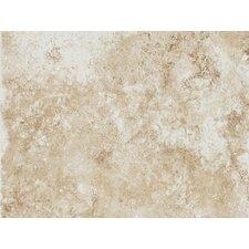 """Fidenza 9"""" x 12"""" Wall Tile in Bianco"""