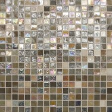 "City Lights 1/2"" x 1/2"" Mosaic Blend Field Tile in Barcelona"