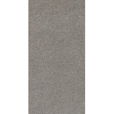 "Magma 24"" x 12"" Light Polished Field Tile in Flat Element"
