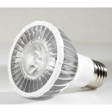 8W LED PAR20-100-240V, 480 Lumens, Cool