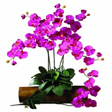 <strong>Nearly Natural</strong> Phalaenopsis Stem in Beauty (Set of 12)